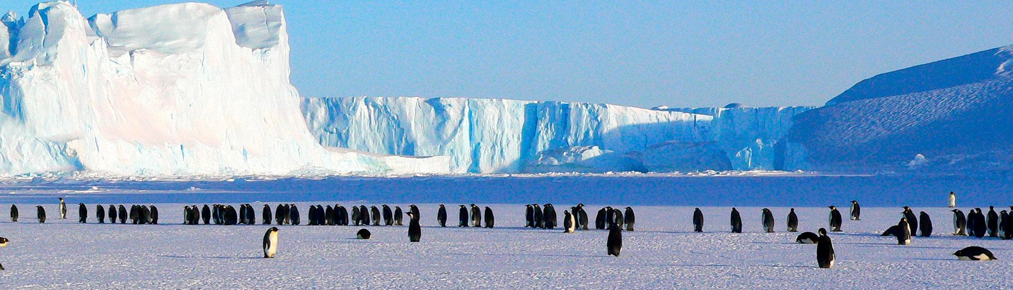 Русскоязычный экспедиционный круиз в Антарктиду